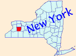New York State map with Wyoming Co. highlighted in red